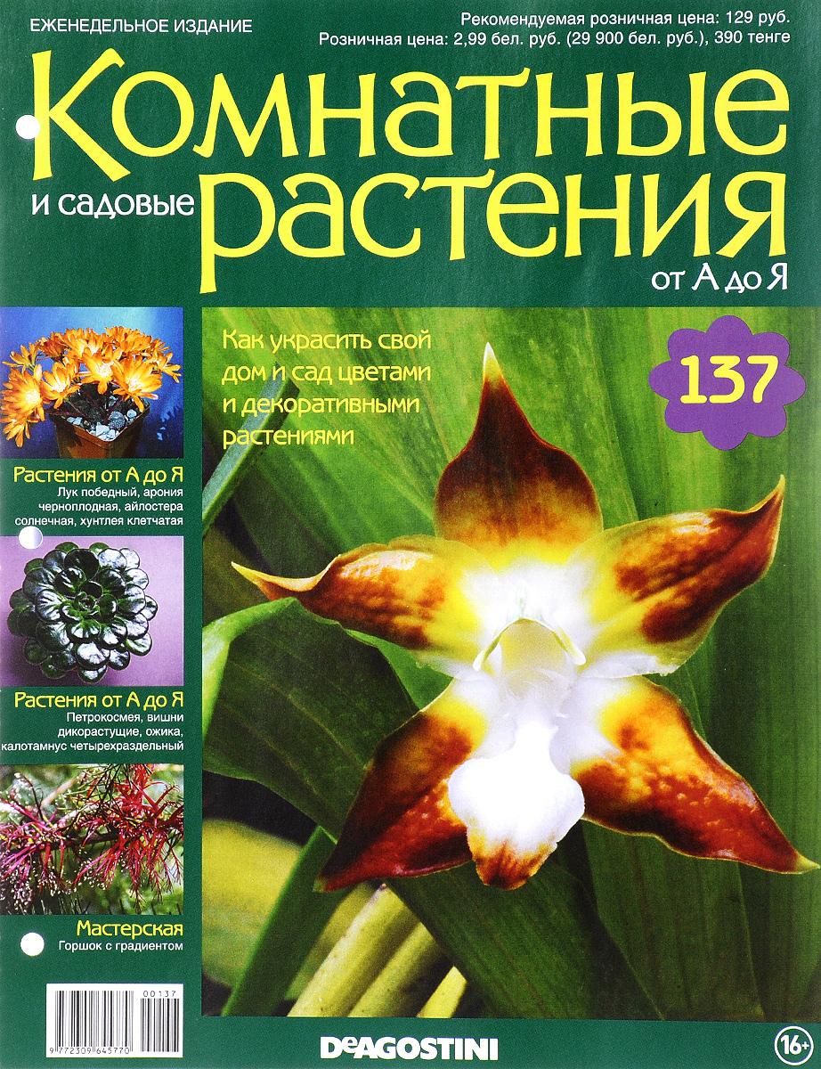 Журнал Комнатные и садовые растения. От А до Я №137 лесоповал я куплю тебе дом lp