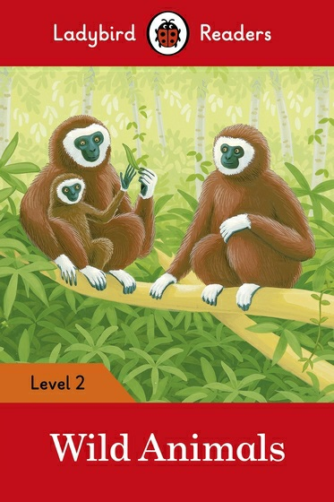 Wild Animals: Level 2 driscoll l cambridge english skills real reading 3 with answers