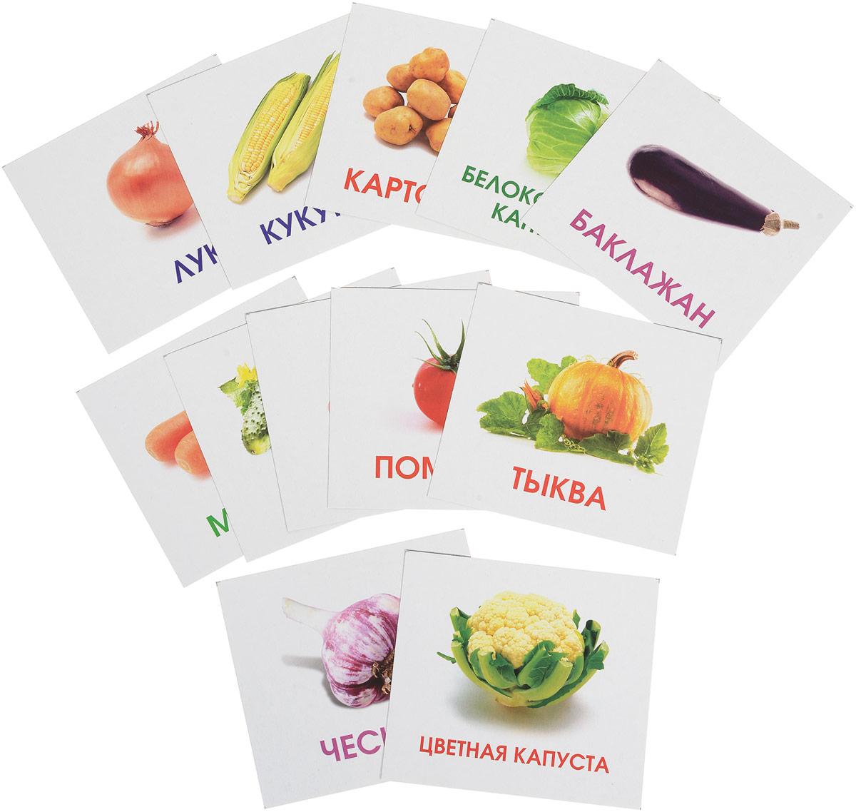 Улыбка Обучающие карточки Овощи на грядке улыбка обучающие карточки игрушки
