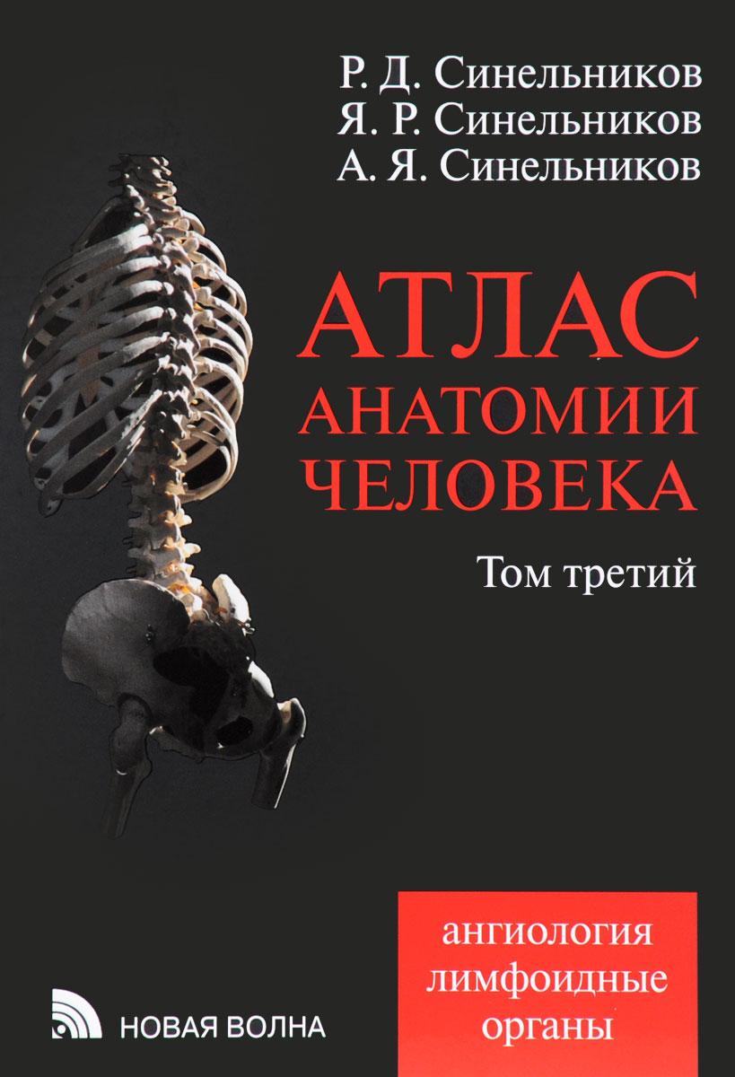 Атлас анатомии человека. В 4 томах. Том 3. Ангиология. Лимфоидные ограны