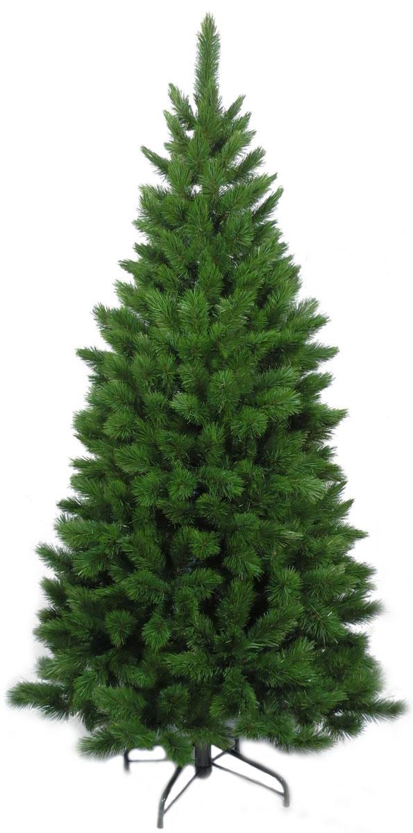 Ель искусственная Triumph Tree Норд, цвет: зеленый, высота 120 см1013526Искусственная елка Норд, выполненная из ПВХ - прекрасный вариант для оформления интерьера к Новому году. В комплекте: металлическая подставка, ствол, верхушка. Для сборки нужно соединить части и распушить веточки. Ветки елки достаточно крепкие, что позволяет им не гнуться и не прогибаться под тяжестью игрушек, легко и быстро распушаются. Иголки не осыпаются, не мнутся, со временем не выцветают. Концы веток декорированы позолотой. Сказочно красивая новогодняя елка украсит интерьер вашего дома и создаст теплую и уютную атмосферу праздника. Откройте для себя удивительный мир сказок и грез. Почувствуйте волшебные минуты ожидания праздника, создайте новогоднее настроение вашим дорогим и близким.Высота: 120 см.