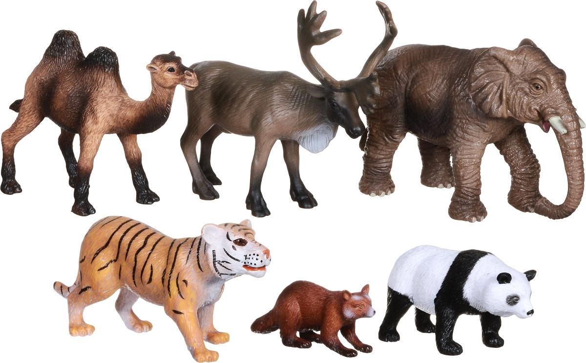 Wenno Набор фигурок Животные Азии 6 шт россия природные зоны животные и растения карта