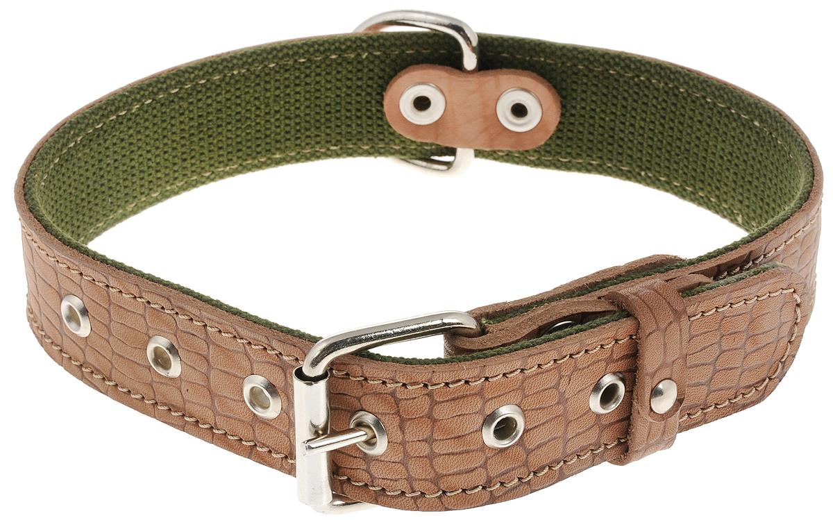 Ошейник Аркон Брезент, цвет: светло-коричневый, зеленый, ширина 3,5 см, длина 65 см