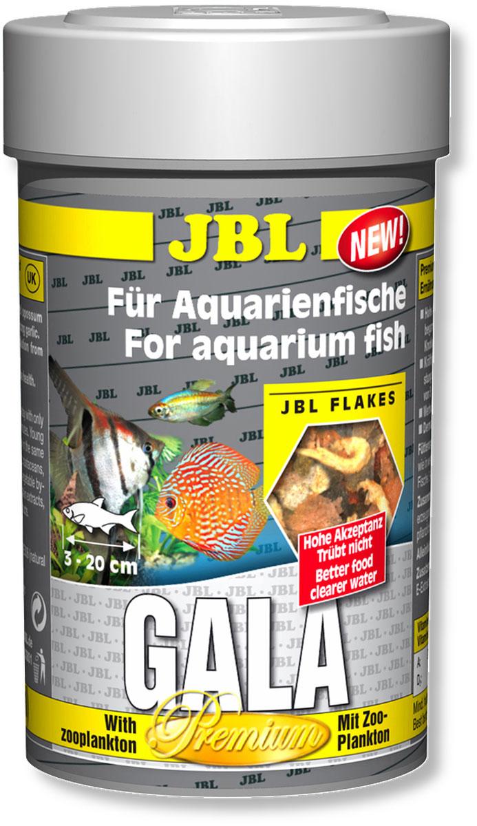 Корм JBL Gala для рыб, в форме хлопьев, 100 мл (15 г) jbl novocrabs корм для панцирных ракообразных 100 мл 45 г