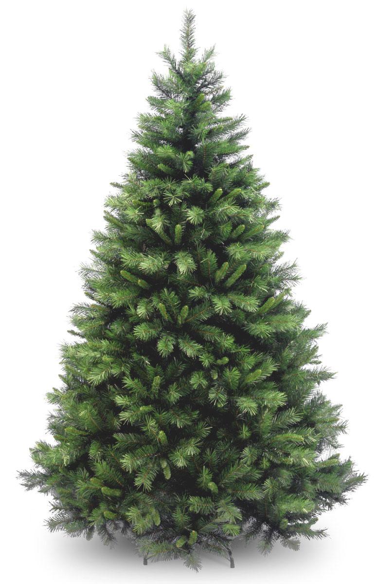 Ель Винчестер высота 183 см, цвет: зеленый ель данхилл высота 183 см цвет светло зеленый