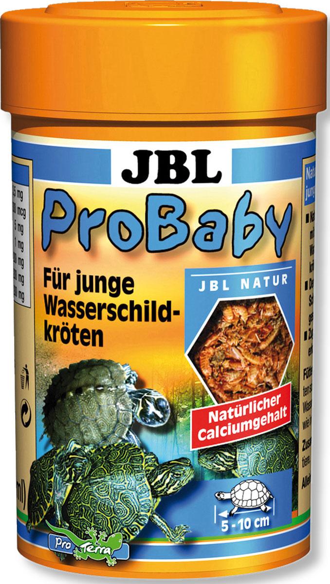 Корм JBL ProBaby для молодых водяных черепах, 100 мл (13 г)JBL7036000Корм JBL ProBaby - это основной корм для маленькихводяных черепах размером 5-10 см. Корм содержитсортированные и очищенные мелкие ракообразные инасекомые с витаминными добавками. Корм обеспечиваетздоровый рост панциря благодаря натуральному кальцию,укрепляет иммунитет благодаря комплексу мультивитаминови витамину С, профилактика заболеваний, связанных савитаминозом.В составе корма содержатся только высококачественныеингредиенты, без низкокачественной рыбной муки. Витаминысохраняются благодаря герметичной упаковке. Корма длячерепах JBL в значительной степени содержат сушеную рыбу,ракообразные и водоросли.Большинство водяных и болотных черепах всеядно. Тем неменее, особенно охотно черепахи едят рыбу и водяныхживотных. Частично любят и водные растения.Рекомендации по кормлению:В зависимости от размера от 2 до 4 раз в день насыпайте вводу столько, сколько черепахи съедят за 10 минут.Состав: моллюски и ракообразные.Анализ состава: белок 32%, жир 4,5%, клетчатка 6,5%, зола38%.Добавки: Витамин А 5000 I. E., Витамин B1 20 mg, Витамин B250 mg, Витамин B6 20 mg, Витамин B12 300 mcg, Витамин C(стабильный) 300 mg, Витамин D3 450 I. E., Витамин Е 3,5 mg,Биотин 300 mcg, K3 5 mg, Фолиевая кислота 1 mg,Никотинамид 200 mg, Кальция пантотенат 200 mg, Холин 200mg.Товар сертифицирован.