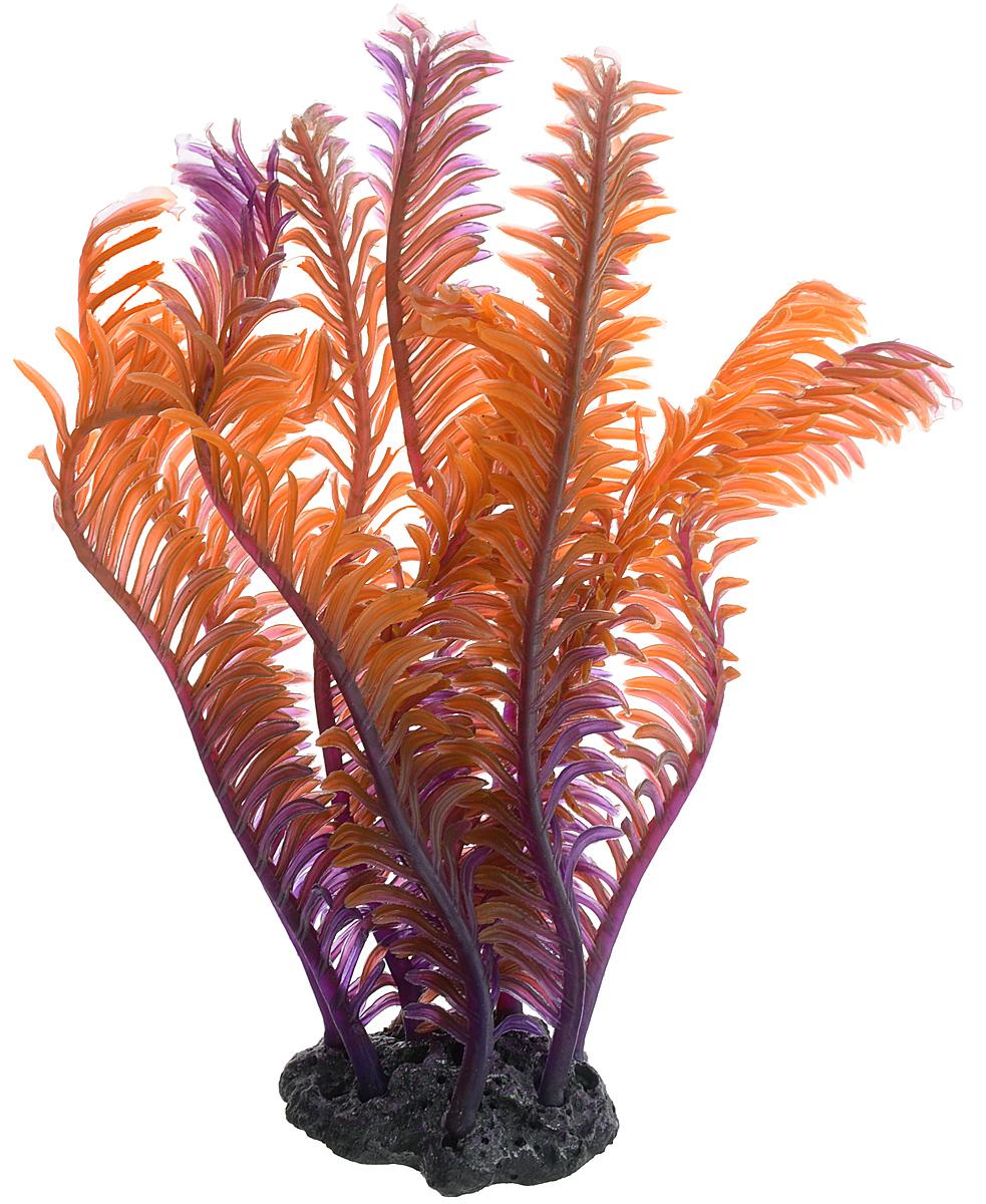 Декорация для аквариума Barbus Коралл, силиконовое, цвет: фиолетово-красный, 13 х 6 х 6 смDecor 240Декорация для аквариума Barbus Коралл, выполненная из высококачественного силикона, станет оригинальным украшением вашего аквариума. Изделие отличается реалистичным исполнением, в воде создается полная имитация настоящего коралла. Декорация абсолютно безопасна, нейтральна к водному балансу, устойчива к истиранию краски, не токсична, подходит как для пресноводного, так и для морского аквариума. Благодаря декорациям Barbus вы сможете смоделировать потрясающий пейзаж на дне вашего аквариума.