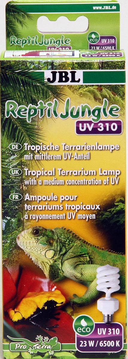 Лампа для тропического террариума JBL ReptilJungle UV 310, Е27, 23 Вт, 6500 КJBL6185700Энергосберегающая лампа JBL ReptilJungle UV 310 со средним уровнем ультрафиолета в областях UV-A и UV-B предназначена для тропических террариумов. Отлично подходит для правильного содержания животных из тропиков и субтропиков, например, хамелеонов, змей. Большая площадь УФ излучения: UV-A стимулирует активность, аппетит и репродуктивное поведение; UV-B - оптимальное усвоение кальция. Рекомендуемое расстояние до животного: от 5 до 20 см при времени экспозиции от 8 до 10 часов в день. Обитатели террариума - холоднокровные, они сильно зависят от света, а, в частности, от качества и интенсивности света. Активность, прием пищи, пищеварение и фазы отдыха зависят от смены дня и ночи и интенсивности света. От источника зависят различия в интенсивности и качестве света.