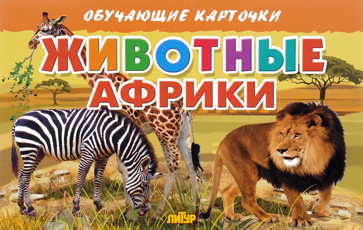 Животные Африки (набор из 16 карточек)