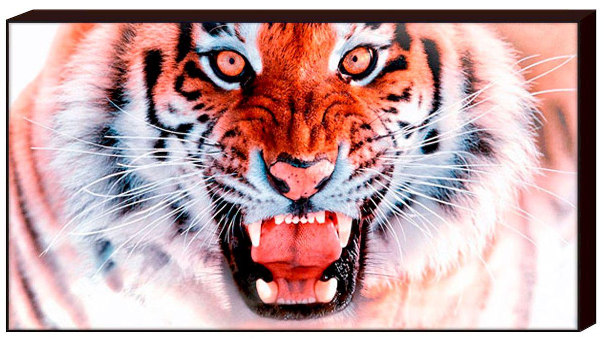 Декобокс Toplight Животные, 100 х 50 см. TL-D4008TL-D4008Декобокс Toplight Животные выполнен из бумаги и оргалита, рама из МДФ. Современные технологии, уникальное оборудование и цифровая печать, используемые в производстве, делают постер устойчивым к выцветанию и обеспечивают исключительное качество произведений. Благодаря наличию необходимых креплений в комплекте установка не займет много времени. Декобокс - это прекрасная возможность создать яркий акцент при оформлении любого помещения. Картина обязательно привлечет внимание и подарит немало приятных впечатлений своим обладателям. Правила ухода: можно протирать сухой, мягкой тканью.