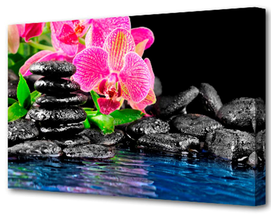 Холст Toplight Цветы, 75 х 50 см. TL-H3014TL-H3014Холст Toplight Цветы выполнен из синтетического полотна, подрамник из МДФ. Изделие выглядит очень аккуратно и эстетично благодаря такому способу оформления как галерейная натяжка. Подрамник исключает провисание полотна. Современные технологии, уникальное оборудование и цифровая печать, используемые в производстве, делают постер устойчивым к выцветанию и обеспечивают исключительное качество произведений. Благодаря наличию необходимых креплений в комплекте установка не займет много времени. Холст Topligh - это прекрасная возможность создать яркий акцент при оформлении любого помещения. Правила ухода: можно протирать сухой, мягкой тканью. Толщина подрамника: 3 см.