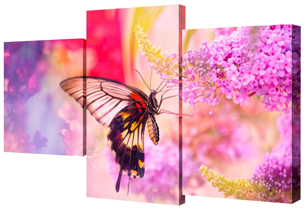 """Модульная картина Toplight """"Цветы"""" выполнена из синтетического полотна, подрамник из МДФ.  Картина состоит из трех частей и выглядит очень аккуратно и эстетично благодаря такому способу оформления как галерейная натяжка. Подрамник исключает провисание полотна.  Современные технологии, уникальное оборудование и цифровая печать, используемые в производстве, делают постер устойчивым к выцветанию и обеспечивают исключительное качество произведений.  Благодаря наличию необходимых креплений в комплекте установка не займет много времени.  Модульная картина - это прекрасная возможность создать яркий акцент при оформлении любого помещения. Изделие обязательно привлечет внимание и подарит немало приятных впечатлений своим обладателям.   Правила ухода: можно протирать сухой, мягкой тканью.  Размеры модулей: 26 х 31 см, 26 х 50 см, 26 х 40 см.     Рекомендованное расстояние между сегментами: 1 см.  Толщина подрамника: 2 см."""