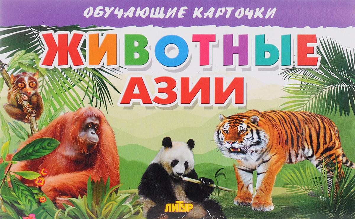 Животные Азии (набор из 16 карточек)