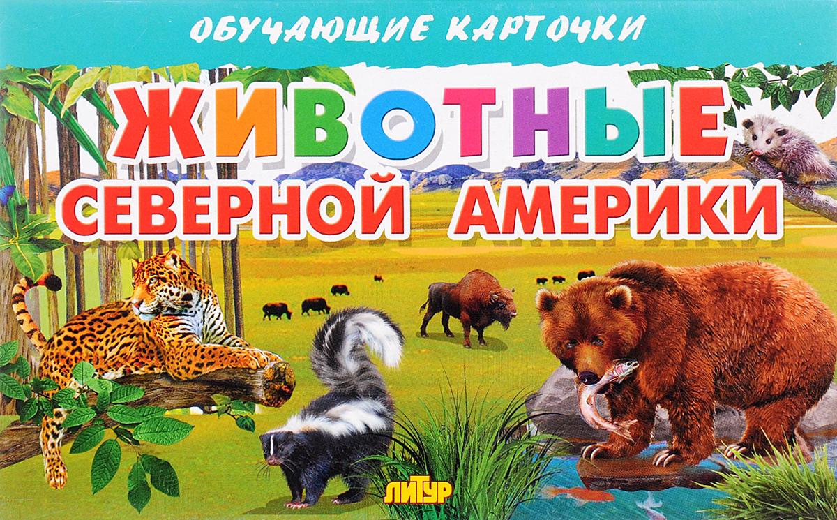 Животные Северной Америки (набор из 16 карточек)