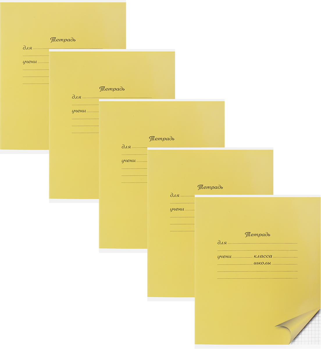 Action! Набор тетрадей в клетку 18 листов 5 штAN 1801/5M/5Уважаемые клиенты! Обращаем ваше внимание на цветовой ассортимент товара. Поставка осуществляется в зависимости от наличия на складе.