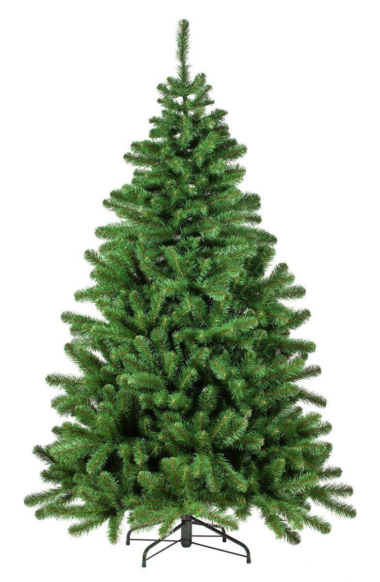 Ель искусственная Триумф Вирджиния, цвет: зеленый, высота 185 см73155 (088955)Искусственная ель Триумф Вирджиния, выполненная из ПВХ, прекрасный вариант для оформления интерьера к Новому году. Такие деревья абсолютно безопасны, удобны в сборке и не занимают много места при хранении. Простая в сборке ель с пышными ветками имеет надежный металлический каркас и подставку. Ель быстро и легко устанавливается и имеет естественный и абсолютно натуральный вид, отличающийся от своих прототипов разве что совершенством форм и мягкостью иголок.Еловые иголочки не осыпаются, не мнутся и не выцветают со временем. Полимерные материалы, из которых они изготовлены, нетоксичны и не поддаются горению.Ель Триумф Вирджиния обязательно создаст настроение волшебства и уюта, а также станет прекрасным украшением дома на период новогодних праздников.Размер подставки: 46 х 46 см.