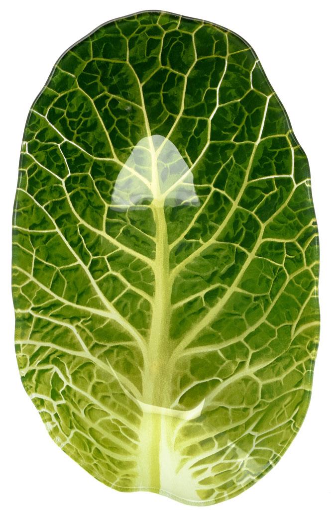 Салатник Walmer Leaf Lettuce, 15,6 х 25,7 х 4 смW22071626Салатник Walmer Leaf Lettuce в виде листа салата изготовлен из тонкого, но прочного стекла. Благодаря инновационной технологии впечатывания в стекло, краски не теряют яркость при частом мытье.Салатник легко мыть и удобно хранить.Размер салатника: 15,6 x 25,7 х 4 см.