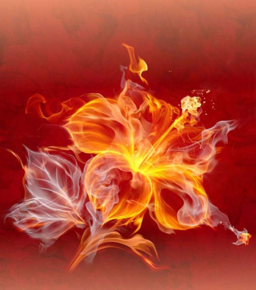 Панно декоративное Твоя Планета Цветок страсти, 210 х 238 см4607161054642
