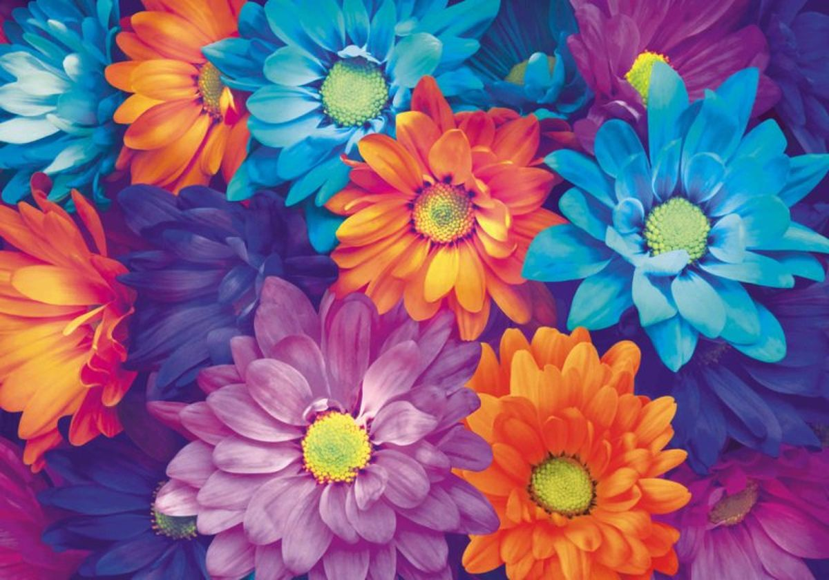 Панно декоративное Твоя Планета Цветы, 210 х 147 см панно декоративное твоя планета кино 210 х 147 см