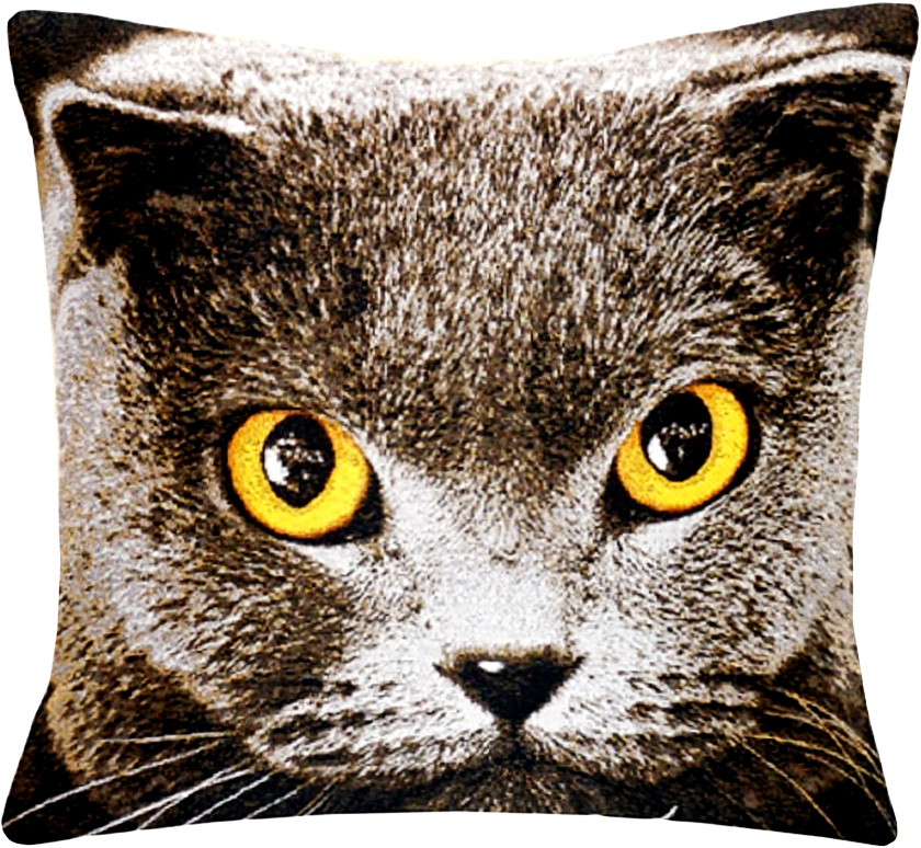 Подушка декоративная Рапира Британская кошка, 45 х 45 см4251Декоративная подушка с наполнителем холлофайбер со съёмным чехлом намолнии, выполненным из жаккарда, - это яркий штрих в интерьере комнаты.Лицевая сторона - гобелен (жаккардовое ткачество), оборотная сторона - однотонная ткань типа плюш.
