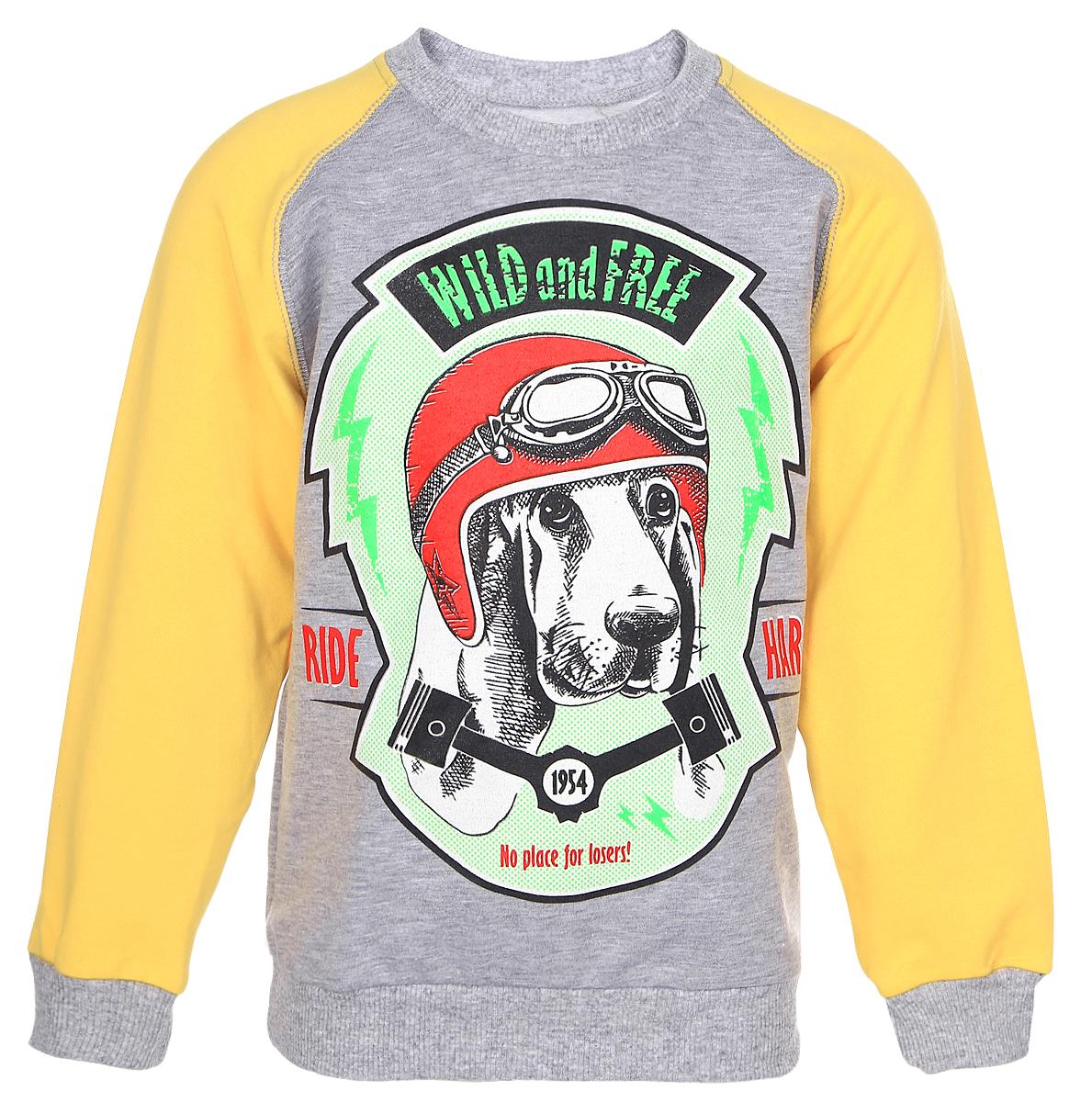 Свитшот для мальчика M&D, цвет: серый меланж, желтый, салатовый. D202MS. Размер 116D202MSСвитшот для мальчика M&D с длинными рукавами-реглан и круглым вырезом горловины выполнен из полиэстера с добавлением хлопка . Изделие украшено крупным принтом с изображением собаки в шлеме с очками и дополнено надписью Wild and Free. Ride Hard..