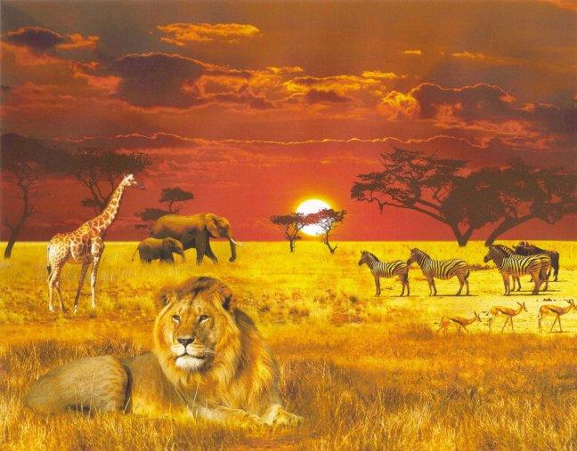 Панно декоративное Твоя Планета Африка, 315 х 254 см4607161054116