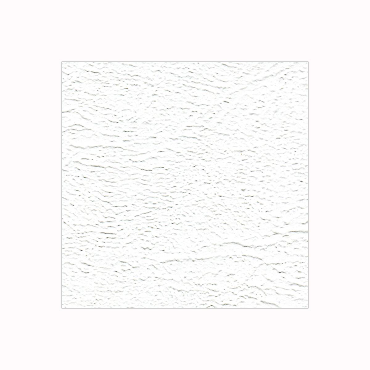 Бумага фактурная Лоза Кожа, цвет: белый, 3 листа582220Фактурная бумага для скрапбукинга Лоза Кожа позволит создать красивый альбом, фоторамку или открытку ручной работы, оформить подарок или аппликацию. Набор включает в себя 3 листа из плотной бумаги. Скрапбукинг - это хобби, которое способно приносить массу приятных эмоций не только человеку, который этим занимается, но и его близким, друзьям, родным. Это невероятно увлекательное занятие, которое поможет вам сохранить наиболее памятные и яркие моменты вашей жизни, а также интересно оформить интерьер дома.