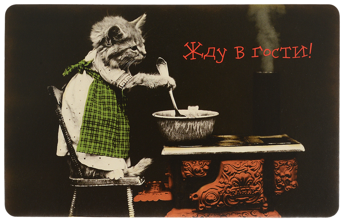 Оригинальная поздравительная открытка выполнена из плотного картона. На лицевой стороне расположено красочное изображение  котенка. Необычная и яркая открытка в винтажном стиле поможет вам выразить чувства и передать теплые поздравления. Такая открытка станет великолепным дополнением к подарку или оригинальным почтовым посланием, которое, несомненно, удивит  получателя своим дизайном и подарит приятные воспоминания.