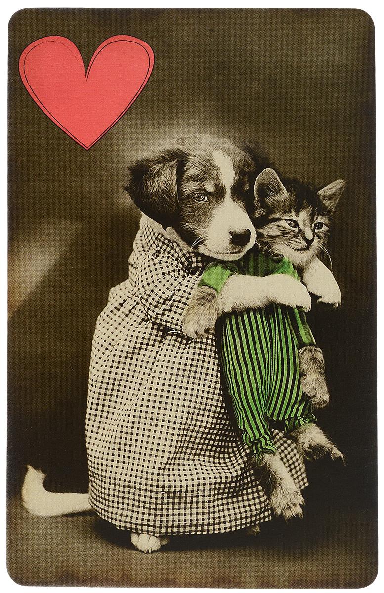 Оригинальная поздравительная открытка выполнена из плотного картона. На лицевой стороне расположено красочное изображение  животных. Необычная и яркая открытка в винтажном стиле поможет вам выразить чувства и передать теплые поздравления. Такая открытка станет великолепным дополнением к подарку или оригинальным почтовым посланием, которое, несомненно, удивит  получателя своим дизайном и подарит приятные воспоминания.