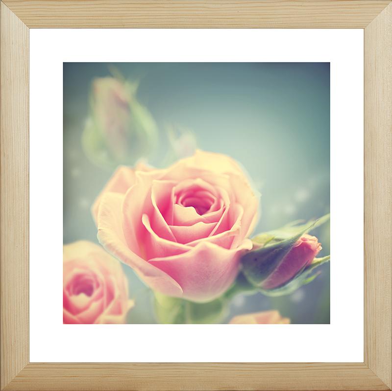 Картина Postermarket Розовые розы, 40 х 40 смMC-46Картина Postermarket Розовые розы прекрасно подойдет для декора интерьера различных помещений. Постер, выполненный в технике фотопечать, обрамлен паспарту и оформлен багетом бежевого цвета. Картина для интерьера (постер) - это современное и актуальное направление в дизайне помещений. Ее можно использовать для оформления любых помещений (дом, квартира, офис, бар, кафе, ресторан или гостиница). работоспособность. Правильное оформление интерьера создает благоприятный психологический климат, улучшает настроение и мотивирует.Размер картины: 400 x 400 мм.