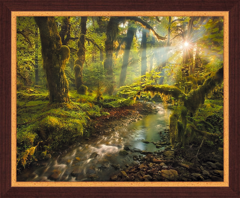 Картина Postermarket Сказочный лес, 40 х 50 смPM-4022Картина Postermarket Сказочный лес прекрасно подойдет для декора интерьера различных помещений. Постер, выполненный в технике фотопечать, оформлен багетом темно-коричневого цвета. Картина для интерьера (постер) - это современное и актуальное направление в дизайне помещений. Ее можно использовать для оформления любых помещений (дом, квартира, офис, бар, кафе, ресторан или гостиница). работоспособность. Правильное оформление интерьера создает благоприятный психологический климат, улучшает настроение и мотивирует.Размер картины: 400 x 500 мм.