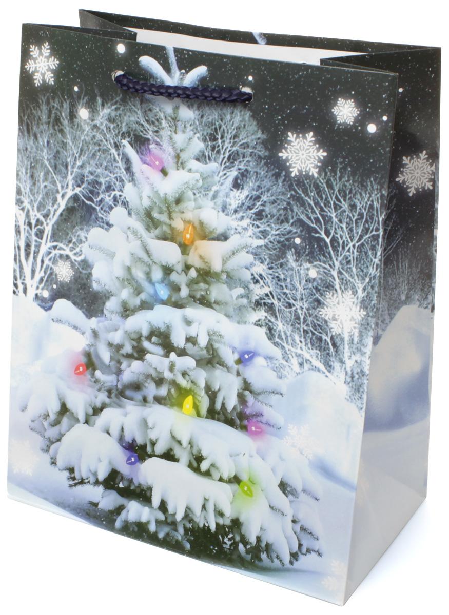 Пакет подарочный МегаМАГ Новый год, 18 х 22,7 х 10 см. 2111 M2111 MПодарочный пакет МегаМАГ, изготовленный из плотной ламинированной бумаги, станет незаменимым дополнением к выбранному подарку. Для удобной переноски на пакете имеются две ручки-шнурки.Подарок, преподнесенный в оригинальной упаковке, всегда будет самым эффектным и запоминающимся. Окружите близких людей вниманием и заботой, вручив презент в нарядном, праздничном оформлении.