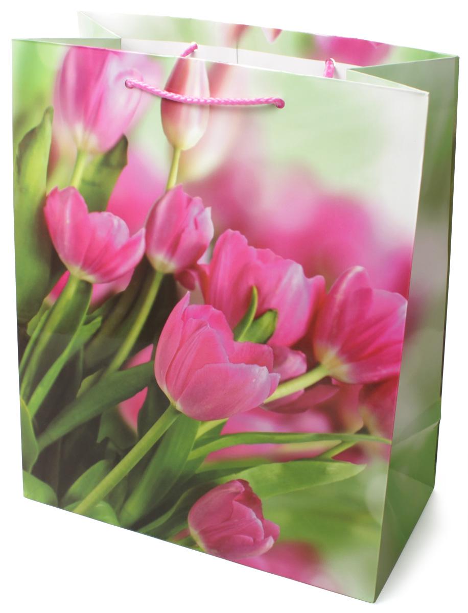 Пакет подарочный МегаМАГ Розовые тюльпаны, 26,4 х 32,7 х 13,6 см. 3118 L3118 LПодарочный пакет МегаМАГ, изготовленный из плотной ламинированной бумаги, станет незаменимым дополнением к выбранному подарку. Для удобной переноски на пакете имеются две ручки-шнурки. Подарок, преподнесенный в оригинальной упаковке, всегда будет самымэффектным и запоминающимся. Окружите близких людей вниманием и заботой, вручив презент в нарядном, праздничном оформлении.