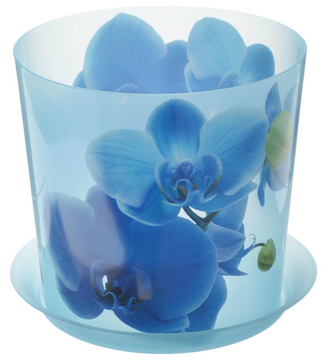 Кашпо Idea Деко, с подставкой, цвет: голубой, 2,4 лМ 3106Кашпо Idea Деко изготовлено из высококачественного полипропилена. Специальный поддон предназначен для стока воды. Изделие прекрасно подходит для выращивания растений и цветов в домашних условиях. Лаконичный дизайн впишется в интерьер любого помещения. Диаметр поддона: 17,5 см. Диаметр кашпо по верхнему краю: 16 см.Высота кашпо: 15 см.Объем кашпо: 2,4 л.