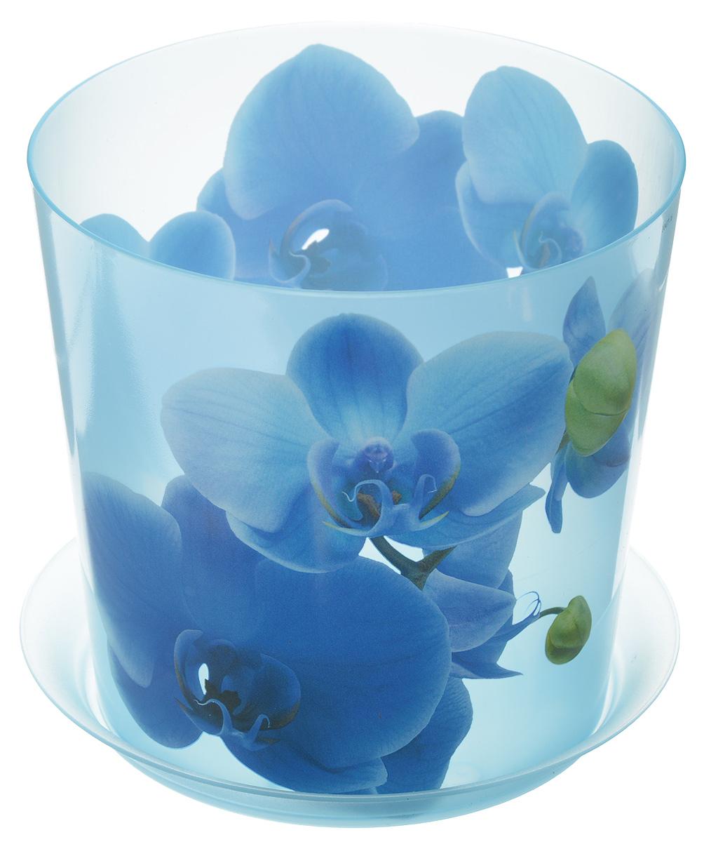 Кашпо Idea Деко, с подставкой, цвет: голубой, 1,2 лМ 3105Кашпо Idea Деко изготовлено из высококачественного полипропилена. Специальный поддон предназначен для стока воды. Изделие прекрасно подходит для выращивания растений и цветов в домашних условиях. Лаконичный дизайн впишется в интерьер любого помещения. Диаметр поддона: 13,5 см. Диаметр кашпо по верхнему краю: 12,5 см.Высота кашпо: 12 см.Объем кашпо: 1,2 л.