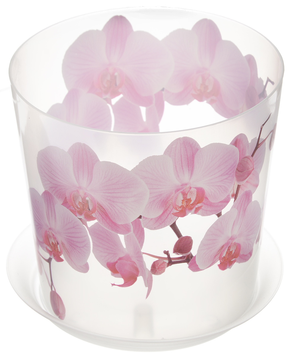 Кашпо Idea Деко, с подставкой, цвет: прозрачный, розовый, 1,2 лМ 3105Любой, даже самый современный и продуманный интерьер будет не завершенным без растений. Они не только очищают воздух и насыщают его кислородом, но и заметно украшают окружающее пространство. Такому полезному члену семьи просто необходимо красивое и функциональное кашпо, оригинальный горшок или необычная ваза! Мы предлагаем - Кашпо с подставкой 1,2 л ДЕКО. Орхидея! Оптимальный выбор материала - это пластмасса! Почему мы так считаем? Малый вес. С легкостью переносите горшки и кашпо с места на место, ставьте их на столики или полки, подвешивайте под потолок, не беспокоясь о нагрузке. Простота ухода. Пластиковые изделия не нуждаются в специальных условиях хранения. Их легко чистить достаточно просто сполоснуть теплой водой. Никаких царапин. Пластиковые кашпо не царапают и не загрязняют поверхности, на которых стоят. Пластик дольше хранит влагу, а значит растение реже нуждается в поливе. Пластмасса не пропускает воздух корневой системе растения не грозят резкие перепады температур. Огромный выбор форм, декора и расцветок вы без труда подберете что-то, что идеально впишется в уже существующий интерьер. Соблюдая нехитрые правила ухода, вы можете заметно продлить срок службы горшков, вазонов и кашпо из пластика: всегда учитывайте размер кроны и корневой системы растения (при разрастании большое растение способно повредить маленький горшок) берегите изделие от воздействия прямых солнечных лучей, чтобы кашпо и горшки не выцветали держите кашпо и горшки из пластика подальше от нагревающихся поверхностей. Создавайте прекрасные цветочные композиции, выращивайте рассаду или необычные растения, а низкие цены позволят вам не ограничивать себя в выборе.