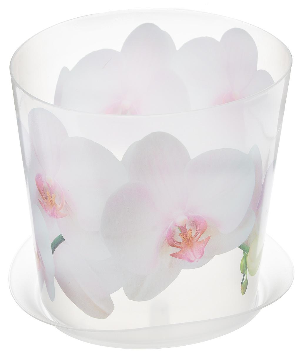 Кашпо Idea Деко, с подставкой, цвет: прозрачный, белый, 1,2 лМ 3105Кашпо Idea Деко изготовлено из высококачественного полипропилена. Специальный поддон предназначен для стока воды. Изделие прекрасно подходит для выращивания растений и цветов в домашних условиях. Лаконичный дизайн впишется в интерьер любого помещения. Диаметр поддона: 13,5 см. Диаметр кашпо по верхнему краю: 12,5 см.Высота кашпо: 12 см.Объем кашпо: 1,2 л.