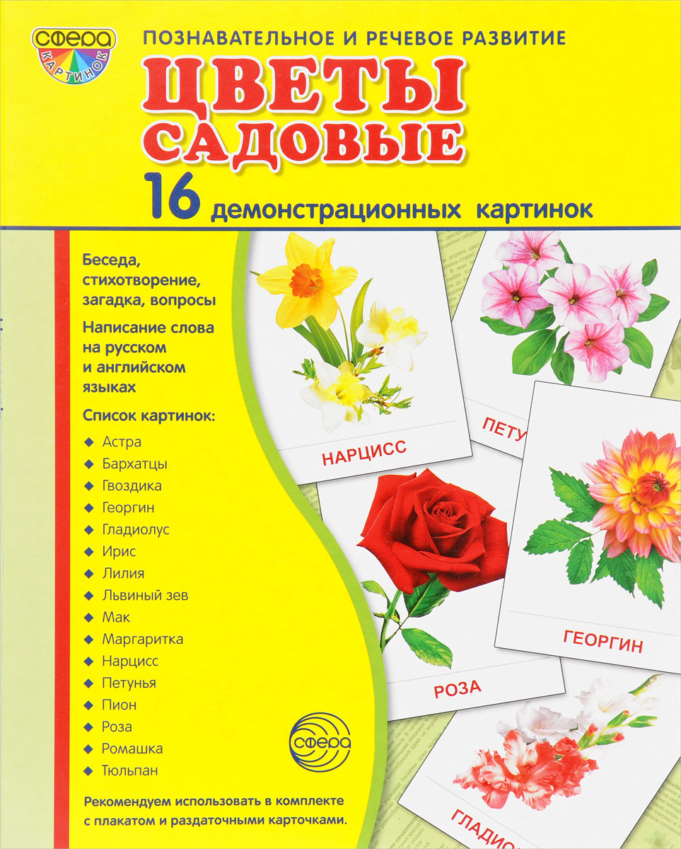Цветы садовые (набор из 16 демонстрационных картинок)