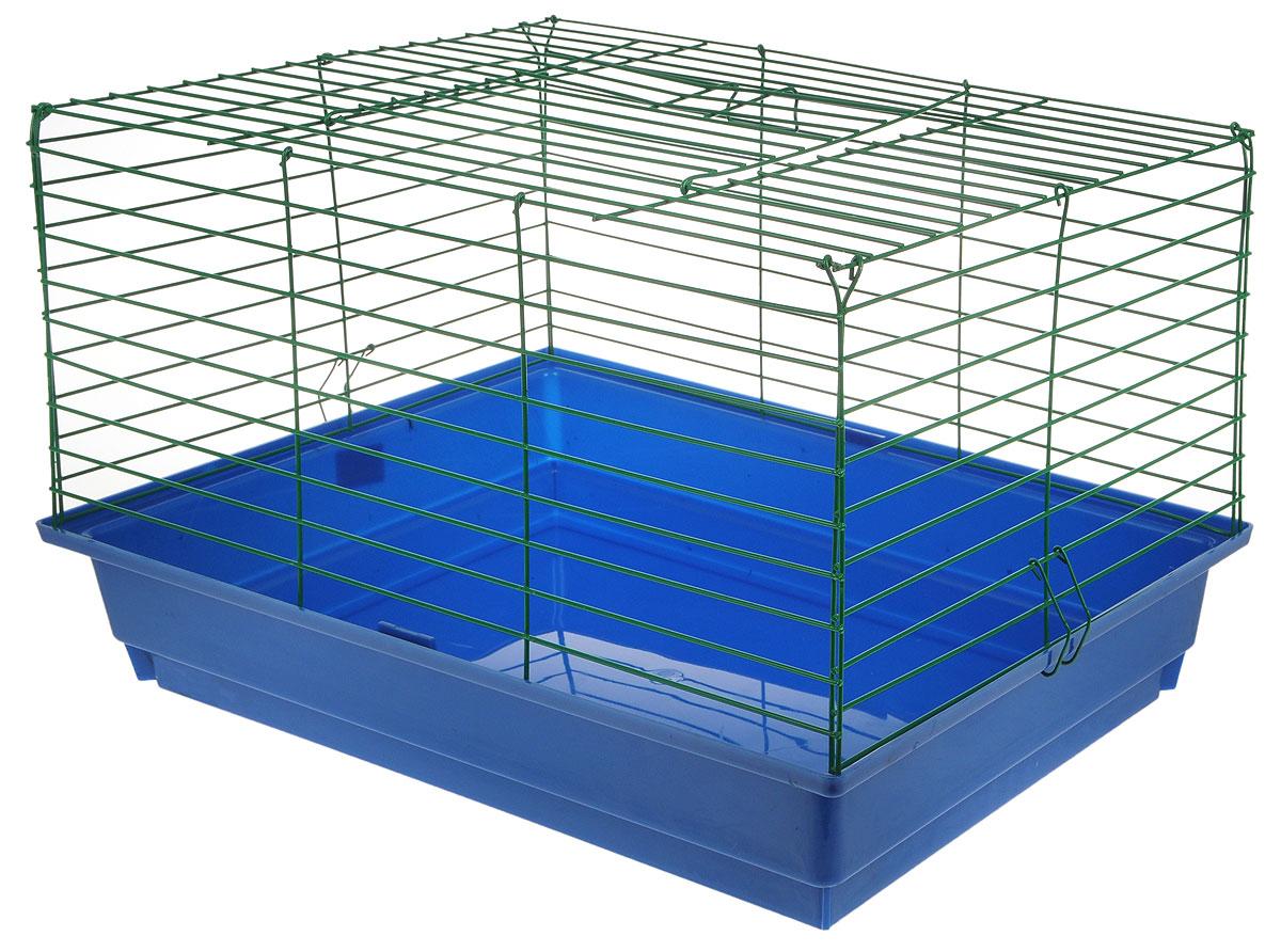 Клетка для кроликов ЗооМарк, цвет: синий поддон, зеленая решетка, 59 х 40 х 35 см620СЗКлетка для кроликов ЗооМарк, выполненная из металла и пластика, предназначена для содержания вашего любимца. Клетка имеет прямоугольную форму, очень просторна, оснащена съемным поддоном. Она очень легко собирается и разбирается.Такая клетка станет для вашего питомца уютным домиком и надежным убежищем.
