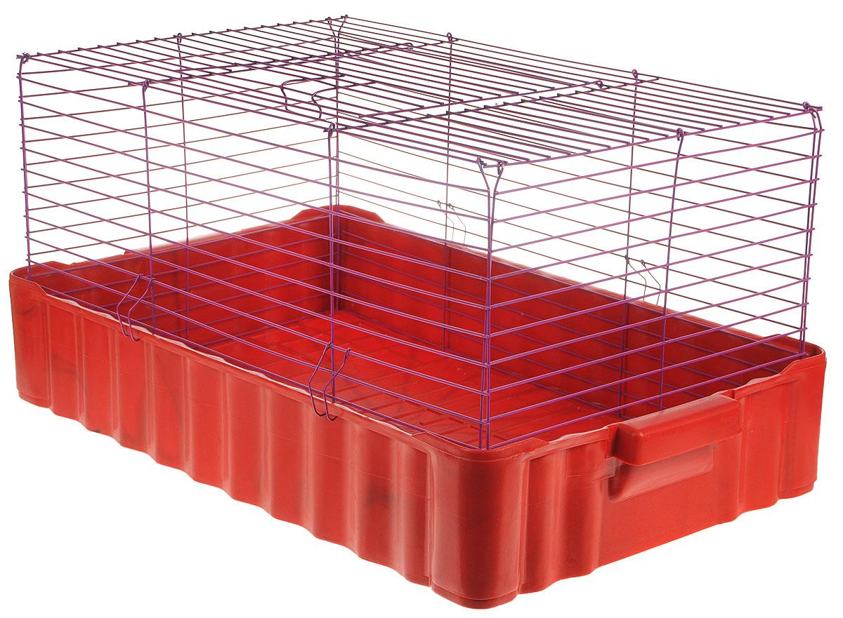 Клетка для кроликов ЗооМарк, цвет: красный поддон, красная фиолетовая, 75 х 46 х 40 см640КФКлетка для кроликов ЗооМарк, выполненная из металла и пластика, предназначена для содержания вашего любимца. Клетка имеет прямоугольную форму и очень просторна. Размеры позволят оснастить клетку всеми необходимыми предметами. Она очень легко собирается и разбирается. Такая клетка станет для вашего питомца уютным домиком и надежным убежищем.