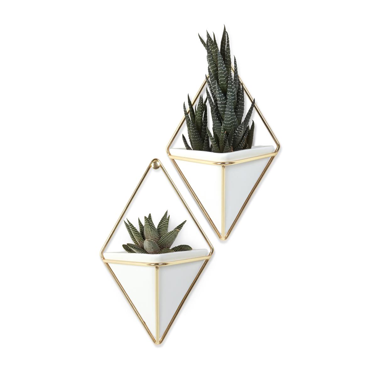 Декоративное украшение Umbra Trigg, настенное, цвет: белый, 2 шт470753-524Строгие геометрические формы не ограничивают воображение, а наоборот, вдохновляют на творчество и создание неповторимых интерьеров. Такой просто и такой эффектный декор сочетает в себе красоту и функциональность: в керамический треугольник можно поместить разные канцелярские мелочи, косметические принадлежности - можно даже использовать его как кашпо!Он вешается на любой гвоздик или вешалку и отлично сочетается с другими декорами, картинами и постерами.В комплекте 2 украшения.