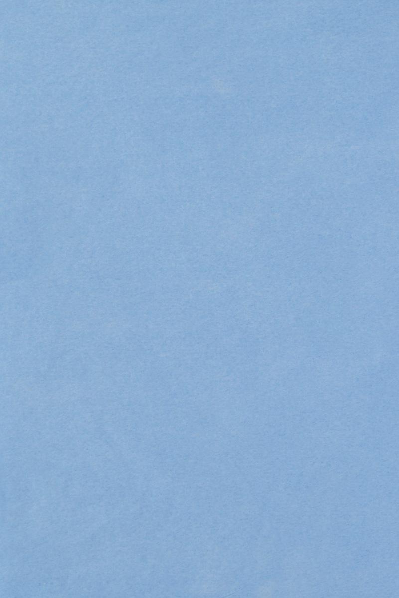 Бумага тишью Hobby and You, цвет: синий, 50 х 70 см, 3 листа583491_HY06002_синийБумага тишью Hobby and You - это тонкая, нежная и привлекательная декоративная бумага. Она производится из беленой сульфатной целлюлозы, получаемой из древесины деревьев хвойных пород. Бумага тишью Hobby and You идеально подходит для стильного оформления подарков и для создания помпонов, цветов, гирлянд и другого декора.Такой упаковочный элемент прекрасно дополнит любую упаковку и сделает ее яркой и праздничной.Размер бумаги тишью: 50 х 70 см.