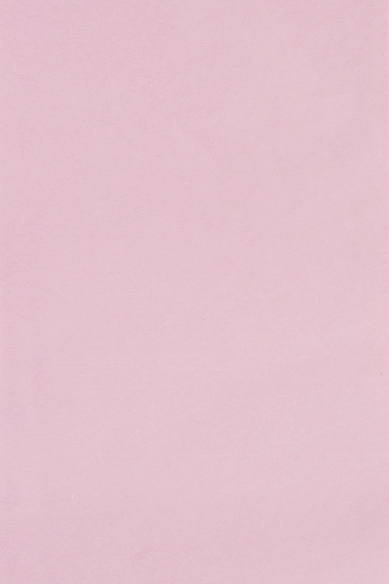 Бумага тишью Hobby and You, цвет: нежно-розовый, 50 х 70 см, 3 листа583491_HY06011_нежно-розовыйБумага тишью Hobby and You - это тонкая, нежная и привлекательная декоративнаябумага. Она производится из беленой сульфатной целлюлозы, получаемой издревесины деревьев хвойных пород.Бумага тишью Hobby and You идеально подходит для стильного оформления подаркови для создания помпонов, цветов, гирлянд и другого декора. Такой упаковочный элемент прекрасно дополнит любую упаковку и сделает ееяркой и праздничной. Размер бумаги тишью: 50 х 70 см.