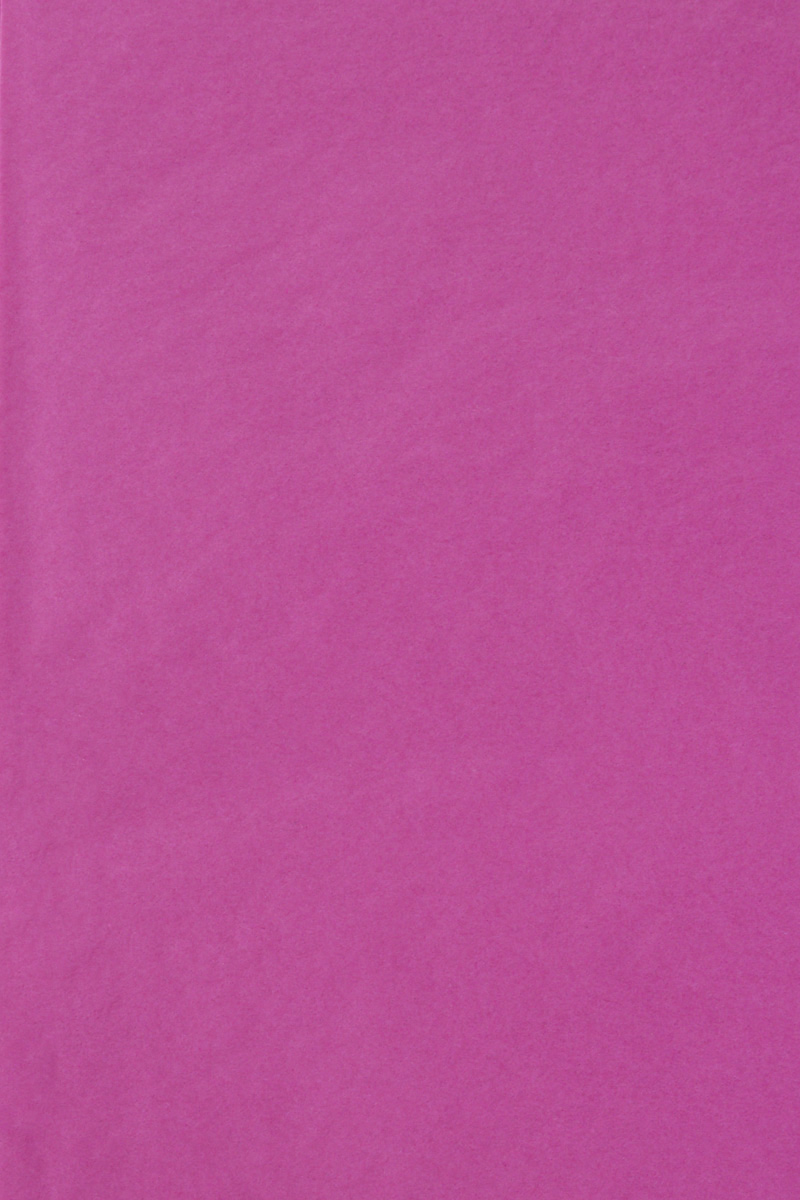Бумага тишью Hobby and You, цвет: фуксия, 50 х 70 см, 3 листа583491_HY06013_фуксияБумага тишью Hobby and You - это тонкая, нежная и привлекательная декоративная бумага. Она производится из беленой сульфатной целлюлозы, получаемой из древесины деревьев хвойных пород. Бумага тишью Hobby and You идеально подходит для стильного оформления подарков и для создания помпонов, цветов, гирлянд и другого декора.Такой упаковочный элемент прекрасно дополнит любую упаковку и сделает ее яркой и праздничной.Размер бумаги тишью: 50 х 70 см.
