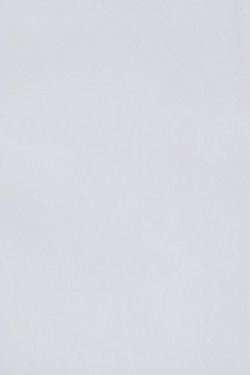 Бумага тишью Hobby and You, цвет: белый, 50 х 70 см, 3 листа583491_HY06000_белыйБумага тишью Hobby and You - это тонкая, нежная и привлекательная декоративная бумага. Она производится из беленой сульфатной целлюлозы, получаемой из древесины деревьев хвойных пород. Бумага тишью Hobby and You идеально подходит для стильного оформления подарков и для создания помпонов, цветов, гирлянд и другого декора.Такой упаковочный элемент прекрасно дополнит любую упаковку и сделает ее яркой и праздничной.Размер бумаги тишью: 50 х 70 см.