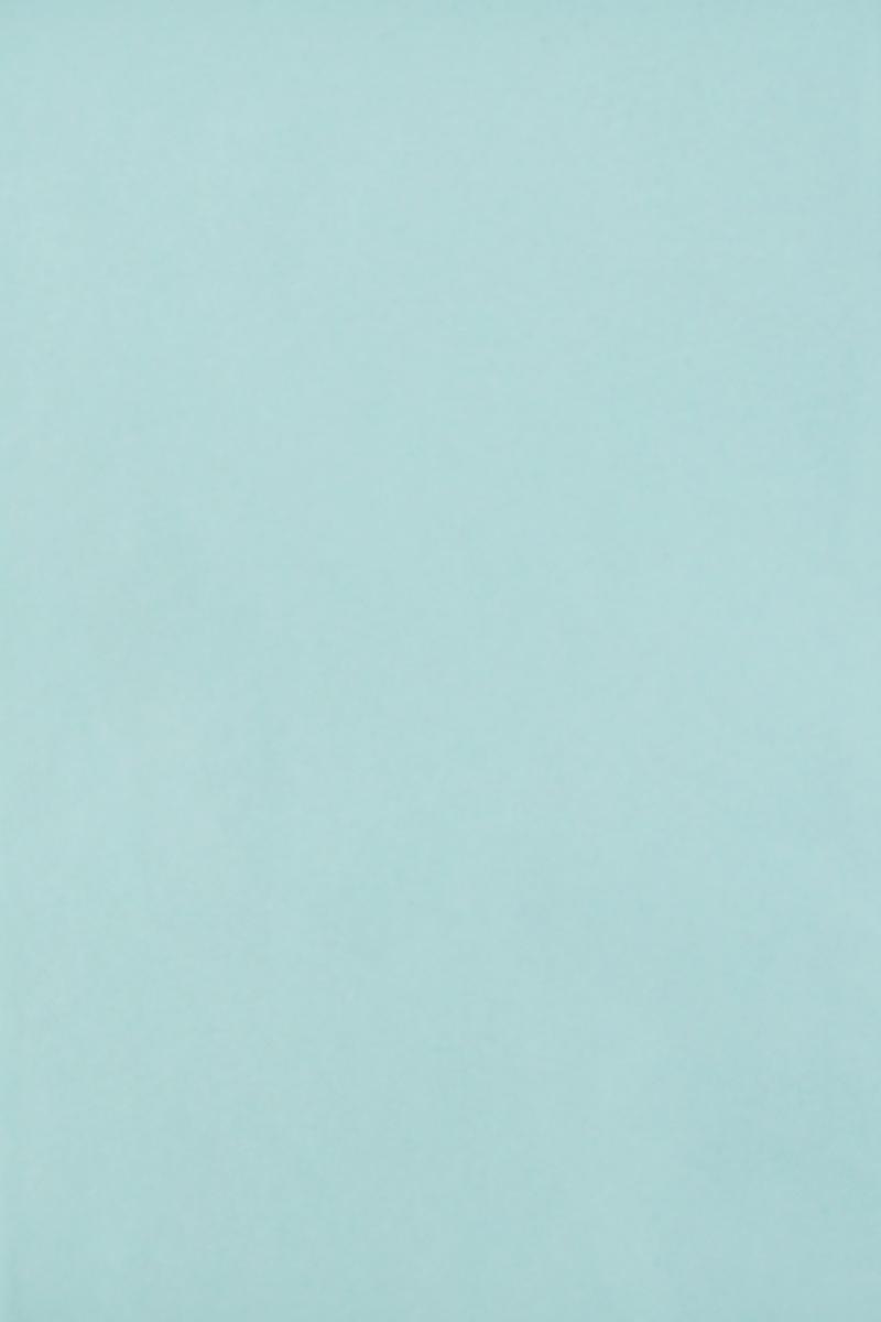 Бумага тишью Hobby and You, цвет: светло-голубой, 50 х 70 см, 3 листа583491_HY06025_светло-голубойБумага тишью Hobby and You - это тонкая, нежная и привлекательная декоративная бумага. Она производится из беленой сульфатной целлюлозы, получаемой из древесины деревьев хвойных пород. Бумага тишью Hobby and You идеально подходит для стильного оформления подарков и для создания помпонов, цветов, гирлянд и другого декора.Такой упаковочный элемент прекрасно дополнит любую упаковку и сделает ее яркой и праздничной.Размер бумаги тишью: 50 х 70 см.
