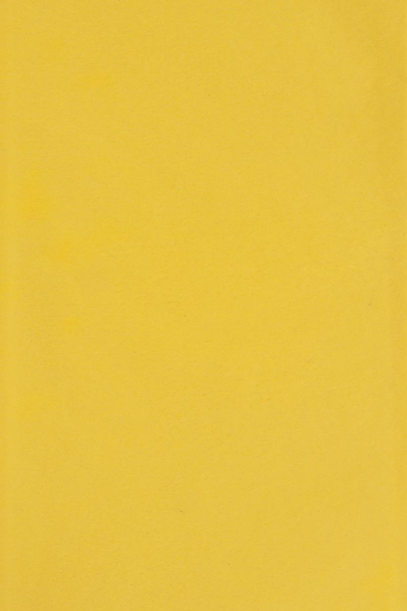 Бумага тишью Hobby and You, цвет: желтый, 50 х 70 см, 3 листа583491_HY06024_желтыйБумага тишью Hobby and You - это тонкая, нежная и привлекательная декоративная бумага. Она производится из беленой сульфатной целлюлозы, получаемой из древесины деревьев хвойных пород. Бумага тишью Hobby and You идеально подходит для стильного оформления подарков и для создания помпонов, цветов, гирлянд и другого декора.Такой упаковочный элемент прекрасно дополнит любую упаковку и сделает ее яркой и праздничной.Размер бумаги тишью: 50 х 70 см.