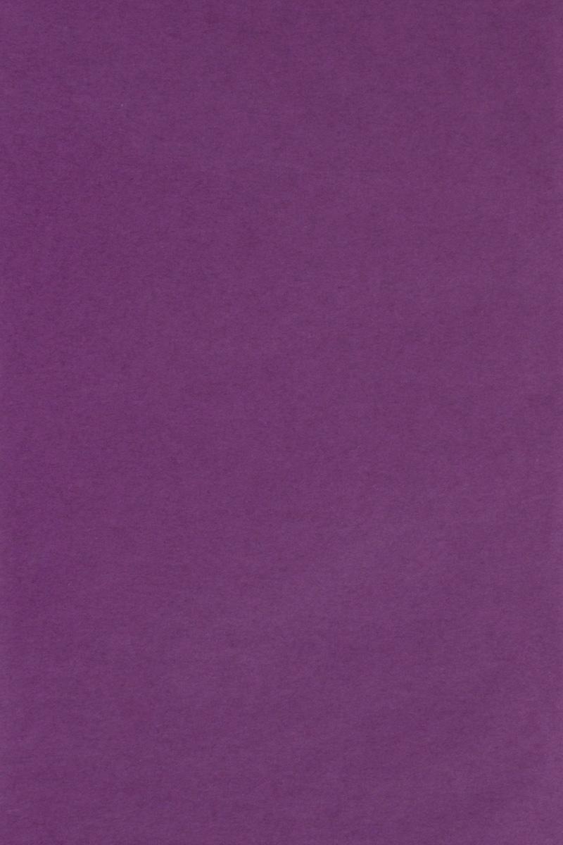 Бумага тишью Hobby and You, цвет: фиолетовый, 50 х 70 см, 3 листа583491_HY06021_фиолетовыйБумага тишью Hobby and You - это тонкая, нежная и привлекательная декоративная бумага. Она производится из беленой сульфатной целлюлозы, получаемой из древесины деревьев хвойных пород. Бумага тишью Hobby and You идеально подходит для стильного оформления подарков и для создания помпонов, цветов, гирлянд и другого декора.Такой упаковочный элемент прекрасно дополнит любую упаковку и сделает ее яркой и праздничной.Размер бумаги тишью: 50 х 70 см.