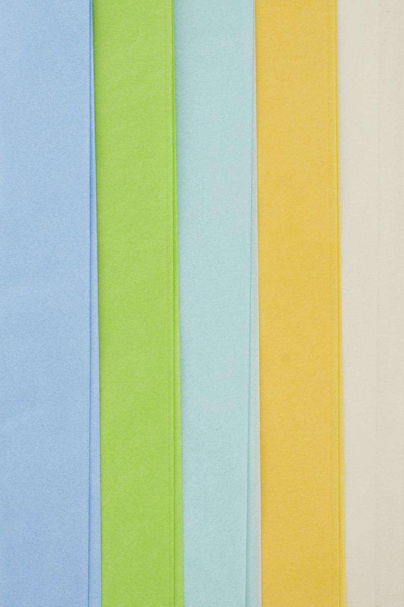 Набор бумаги тишью Hobby and You Полевые цветы, 50 х 70 см, 5 листов583476Бумага тишью Hobby and You Полевые цветы - это тонкая, нежная и привлекательная декоративная бумага. Она производится из беленой сульфатной целлюлозы, получаемой из древесины деревьев хвойных пород. Бумага тишью Hobby and You Полевые цветы идеально подходит для стильного оформления подарков и для создания помпонов, цветов, гирлянд и другого декора.Такой упаковочный элемент прекрасно дополнит любую упаковку и сделает ее яркой и праздничной.Размер бумаги тишью: 50 х 70 см.