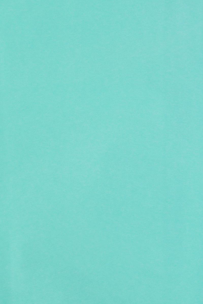 Бумага тишью Hobby and You, цвет: бирюзовый, 50 х 70 см, 3 листа583491_HY06038_бирюзовыйБумага тишью Hobby and You - это тонкая, нежная и привлекательная декоративная бумага. Она производится из беленой сульфатной целлюлозы, получаемой из древесины деревьев хвойных пород. Бумага тишью Hobby and You идеально подходит для стильного оформления подарков и для создания помпонов, цветов, гирлянд и другого декора.Такой упаковочный элемент прекрасно дополнит любую упаковку и сделает ее яркой и праздничной.Размер бумаги тишью: 50 х 70 см.